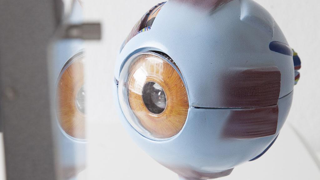 Auge zur Erläuterung des Sicca-Syndroms, Augenheilkunde vor den Toren Kölns, Dr. med. Helen Ayertey